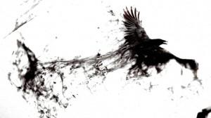 blackbird3-570x321