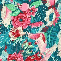 423200e88004d7c589b79c1ad36e5bb3--art-tropical-tropical-birds